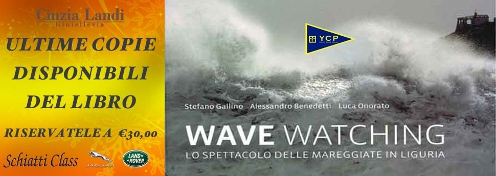 Wave Watching libro